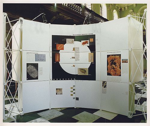 Cambridge Exhibition: Creating Medicine 1987